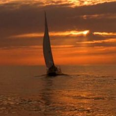 Sailing on the ocean!