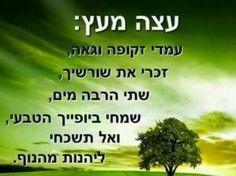 """""""כי האדם עץ השדה"""" כמו שהעץ זקוק למים, כך האדם זקוק לאמונה ותורה (מים משולים לתורה)... כמו שהעץ זקוק לאוויר, כך האדם זקוק למחמאות... הירידה אצלנו מוקבלת לשלכת, הצמיחה אצלנו מוקבלת לאביב,  לכל האדם יש את השלכת שלו, וצריך האדם לזכור שלאחר השלכת יש אביב, תמיד יש תקווה אחים יקרים. ה' יתברך עזר, עוזר ויעזור! יהיו ניסים בע""""ה! לא לפחד כלל!"""