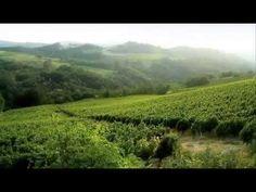Langhe & Roero Piedmont (Piemonte) Italy