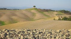 Drought around tuscan countryside!