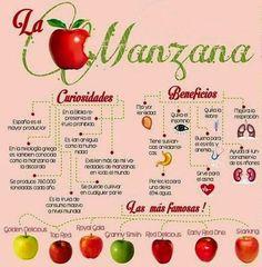 CONOCE CURIOSIDADES Y LOS BENEFICIOS DE LA MANZANA La manzana un fruto sabroso que llega a nosotros los 365 días al año. No sólo nos ofrece un alto valor alimentario sino que también es útil en la vida cotidiana.