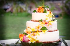 Tropical Plumeria Wedding Cake  www.mikesidney.com