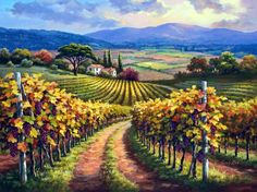 Sung Kim   _ God's promise of Vineyards.
