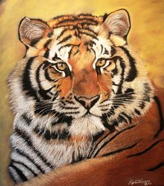 "Artist: Stephen Thompson; Oil Pastel, 2011, Painting ""Tiger"""