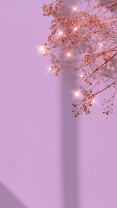 Download free image of Purple sparkle dried flower background image 2685493