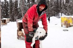 Lance Mackey: The World's Toughest Athlete Jack London said that achieving greatness sometimes means burning white hot, even if there's a price to be paid once the flame goes out. Josh Dean went to Alaska to hang with Lance Mackey, the toughest competitor in Iditarod history. He came away with a new understanding of resilience, bravery, and the iron bond between a musher and his dogs.