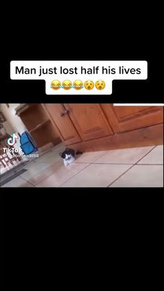 Funny Videos Clean, Crazy Funny Videos, Super Funny Videos, Crazy Funny Memes, Really Funny Memes, Funny Relatable Memes, Haha Funny, Hilarious, Funny Memes Images