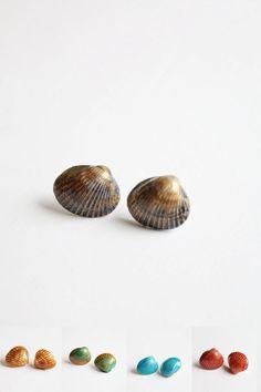 He encontrado este interesante anuncio de Etsy en https://www.etsy.com/es/listing/221833493/medium-size-real-seashell-earrings-big