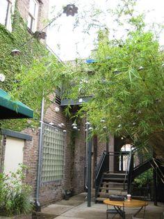 Garrison's Global Bar, patio (Hammond, LA)