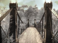 Steam Punk victorian bridge forest park, fine art photography, black and white photography, Victorian photography, feng shui home decor Victorian Photography, Artistic Photography, Black And White Photography, Fine Art Photography, Digital Photography, Photography Ideas, Nature Photography, Infrared Photography, Daddy