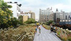 the wonderful High Line park in NYC High Line Park, New York High Line, Park In New York, New York City, Astoria Park, New York Architecture, Hill Park, Urban Park, Lower Manhattan