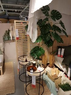 Zero Waste, Ikea, Loft, Furniture, Home Decor, Decoration Home, Ikea Co, Room Decor, Lofts