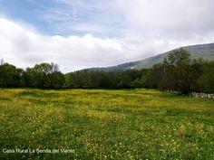 Primavera en el Valle Hermoso