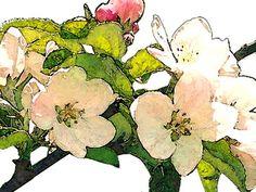 'Apfelblütenträume' von Dirk h. Wendt bei artflakes.com als Poster oder Kunstdruck $18.03