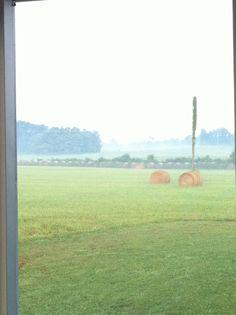 Kentucky Misty Morning