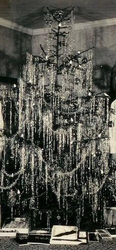 Lovely tree, c. 1930
