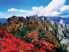 #Seoraksan in Autumn, #Gangwon Province, Korea