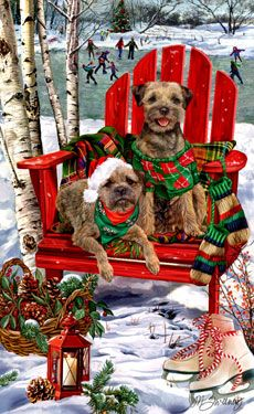 Border Terrier Christmas Holiday Cards are 8 x 5 and come in packages of 12 cards. One design per package. All designs include envelopes, your personal message, and choice of greeting. Pug Christmas, Christmas Animals, Vintage Christmas Cards, Christmas Holidays, Holiday Cards, Highlands Terrier, West Highland Terrier, Pugs, Westies