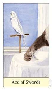 Tarot Card Carousel - Swords