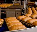 Alvarado Street Bakery: Wheat Bread Factory, Organic & Sprouted Bread