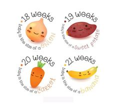 Items similar to Pregnancy Stickers - Belly Stickers - Baby Bump Weekly Stickers - Pregnancy Reveal - Pregnancy Announcement on Etsy Baby Stickers, Cute Stickers, Pregnancy Months, Pregnancy Photos, Maternity Photo Props, Birth Photos, Baby Kicking, Baby Bumps, Baby Month By Month