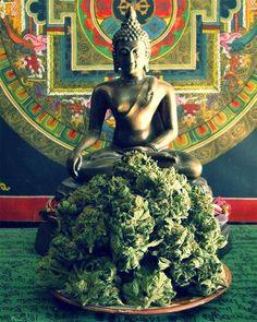 ihaveenoughweed:  thehighbuddha420:  Share the Love...