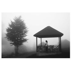 Black and White photography for sale  Fog photography by gonulk, $50.00