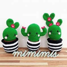 "Cactus Friends "" English pattern by Super Cute Design. Includes step-by-step pictures. This is a pattern for 3 cactus friends with a crochet pot. These cactuses looks super cute as decoration!Cactus Friends PDF Pattern, amigurumi, crochet from Supe Crochet Simple, Crochet Diy, Easy Crochet Projects, Crochet Amigurumi, Crochet Gifts, Amigurumi Patterns, Amigurumi Doll, Crochet Dolls, Crochet Ideas"