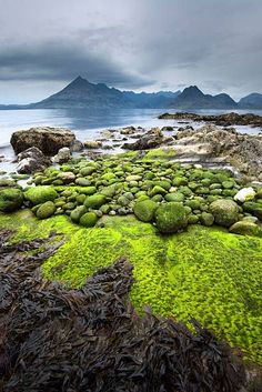 At the Elgol Beach, Scotland.