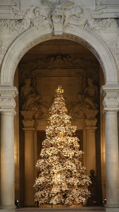 World Tree of Hope - Every year thousands of origami cranes with well wishes for the future adorn a Christmas tree in the Rotunda of San Francisco City Hall, symbolizing global unity and hope for a better world.