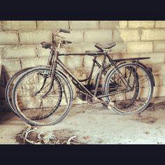 b_cycle