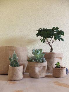 Simple Terrace Ideas You Can Try Potted Plants, Indoor Plants, Pot Plante, Flower Pots, Flowers, Craft Markets, Diy Planters, Storage Baskets, Burlap