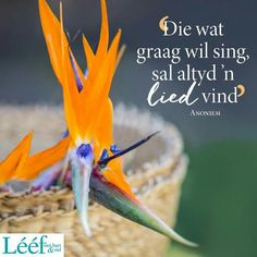 Afrikaans Quotes, Hart, True Stories, Unity, Me Quotes, Verses, Rugby, Songs, My Love