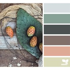design seeds | search | for all who ♥ color ❤ liked on Polyvore featuring backgrounds