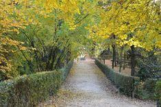 """El Parque del Retiro       @_ElRetiro    """"Lo verdadero es siempre sencillo, pero solemos llegar a ello por el camino más complicado"""" (George Sand) #FelizViernes"""