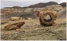 Sarmiento Petrified Wood Natural Monument, Argentina
