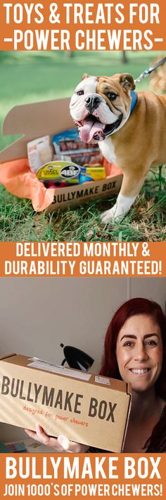 Is your dog a POWER CHEWER? Get DURABLE toys and DELICIOUS treats delivered monthly! All toys guaranteed 14 days or we replace them for free. See here: https://bullymake.com/?utm_source=pinterest&utm_medium=pinterest-ads&utm_term=30retwca-jan10&utm_content=30retwca-jan10