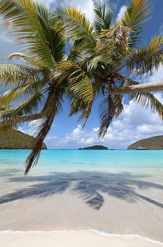 Tropical Destinations — tropicaldestinations: Maho Bay, US Virgin Islands. Dream Vacations, Vacation Spots, Romantic Vacations, Italy Vacation, Romantic Travel, Vacation Ideas, Places To Travel, Places To Visit, The Beach