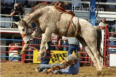 """Arcadia All Florida Championship Rodeo.. """"Grand daddy of Em' All"""" <3"""