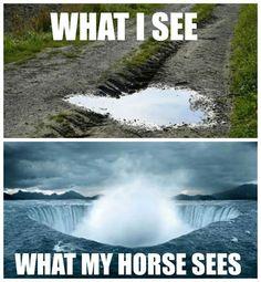 Sooo true w/ a horse rode