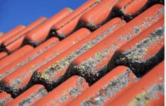 Water Damage Danger: 4 Unfortunate Signs Your Home Needs a New Roof Roof Eaves, House Cleaning Company, Roof Cleaning, Daily Cleaning, Clay Tiles, Restoration Services, Pressure Washing, Professional Cleaning, Water Damage