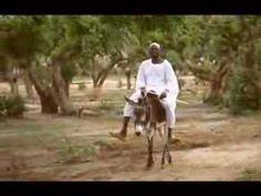 Living Darfur (Official Music Video) by Mattafix Music Songs, My Music, Music Videos, Nazioni Unite, Play It Again Sam, Music Clips, Matt Damon, Mick Jagger, No One Loves Me