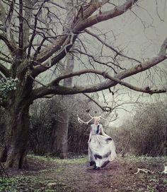 Bella Kotak Photography - One