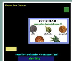 Plantas Para Diabetes 172009 - Aprenda como vencer la diabetes y recuperar su salud.