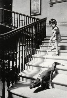 Call DSS on the parents who are allowing this baby to walk a croc! That's ENDANGERMENT! ~ 1960s: Walking my Crocodile