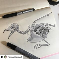 "Melissa is getting into Inktober as well. We just love her bone drawings!  #Repost @mwashburnart (@get_repost)  Yaaaaaay! #inktober !!! I've decided on a theme of bones skulls and skeletons for Inktober this year. The first prompt is ""swift"" so I drew a literal swift (bird) skeleton! #inktober #ink #inkdrawing #inkpen #artmarkers #sketchbook #dailysrawing #bird #nature #skeleton #anatomy #swift #bones #naturalhistory #mwashburnart #illustrator #illustration #illustrationage #twitter…"