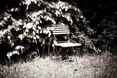 Der alte Biergartenstuhl im Garten meiner Eltern. Der Stuhl steht seit 20 Jahren am selbst Fleck.