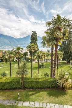 Zwischen Palmen und Lago Maggiore im Tessin:Esplanade Hotel Resort & Spa in Minusio, Schweiz