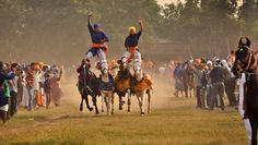 Nihangs, or Sikh religious warriors, display their horse-riding skills at an event organized to celebrate âFateh Divasâ in Amritsar, India, Tennis Match, Akhal Teke, Amritsar, Event Organization, Horse Riding, Indian Art, Warriors, Photo Galleries, October