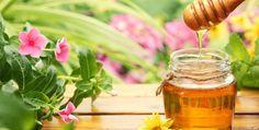 mật ong hà giang